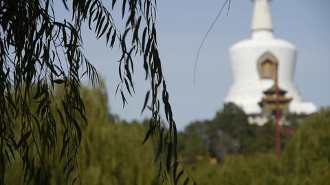 BeiJing BeiHai Park White Tower&Tibetan Buddhism.willow branches in breeze w Footage
