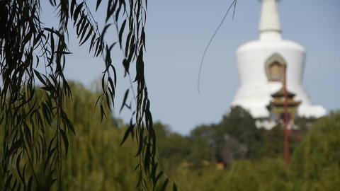 BeiJing BeiHai Park White Tower&Tibetan... Stock Video Footage