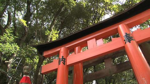 Fushimi Inari fox statue Stock Video Footage