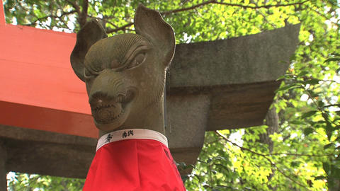 Fushimi inar statue Stock Video Footage