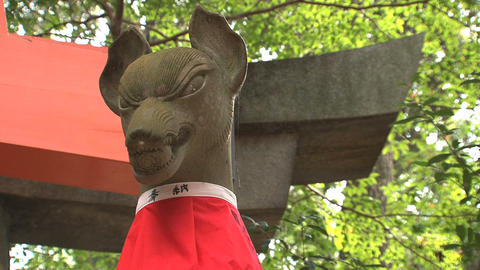 Fushimi inar statue Footage