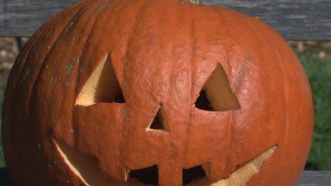 Pumpkin zoom out Stock Video Footage