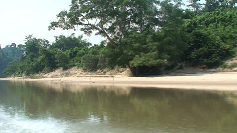 jungle boat at the river Stock Video Footage