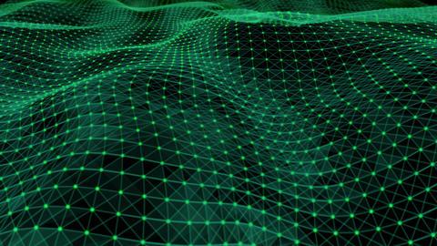 Green Web Animation