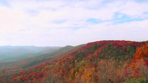 Mountains Full of Fall Colors, 4K Footage