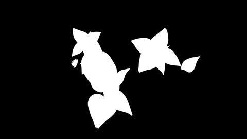 botanical 0602 loop 98-193f partsMask Animation