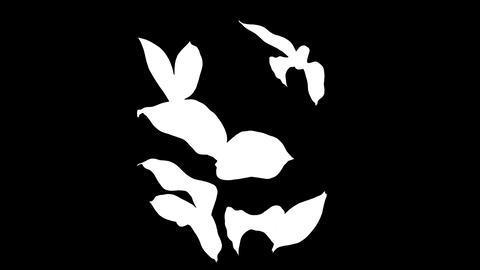 botanical 0604 loop 98-193f partsMask Animation