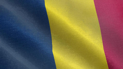 Chad flag wind blowing full frame backgroundChad flag wind blowing full frame background Animation