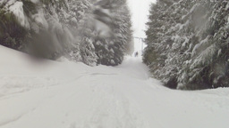 Snowboarding in the mountain forest Stock Video Footage