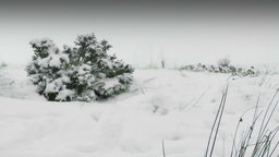 Winter Moor Land Footage