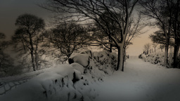 Winter Country Lane Stock Video Footage