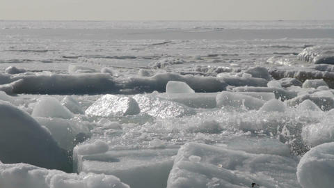 marine ice Footage