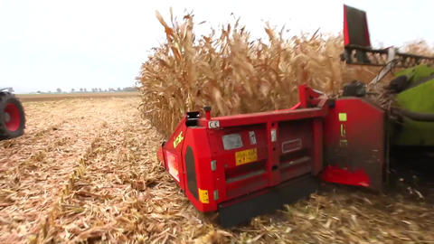 Thresher harvesting maize Stock Video Footage