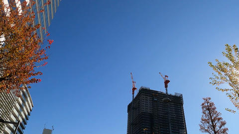 View looking up、Skyscraper under construction Live Action