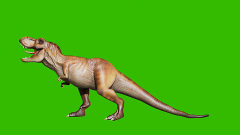 The angry dinosaur tyrannosaurus makes a horrific roar in a animation. Reptile in front of green Animation