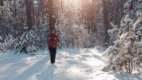 Active woman hiking with backpack at snowy forest Live Action