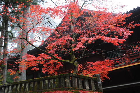 Rinnoji Temple;Japan Fotografía