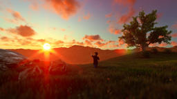 Little boy with airplane toy on a green meadow, tree of life, beautiful sunset Animation