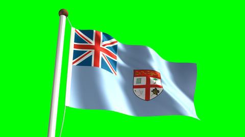 Fiji flag Stock Video Footage