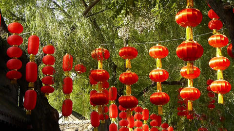Red lanterns & willow swaying in wind,elements of East,beijing nanluo alley Footage