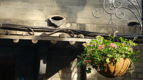 Flower pots under old house eaves with soft sunny Footage