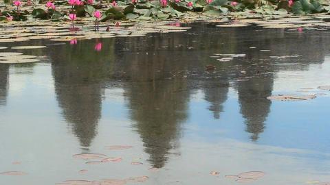 angkor wat water reflextion Stock Video Footage