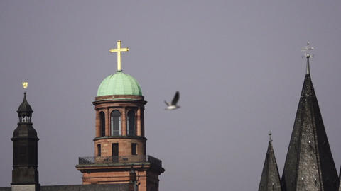 Bird flies by church steeple Footage