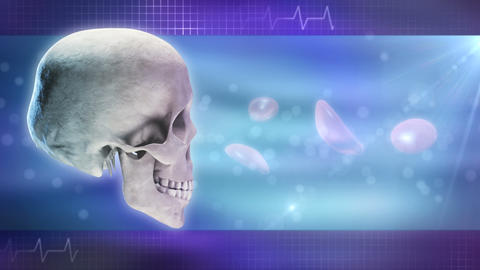 Anatomy and Medicine Background Stock Video Footage
