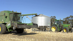 Header Offloading Canola into a Field Bin Stock Video Footage