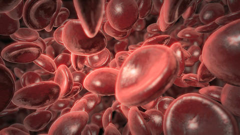 Red Blood Cell Background Loop Stock Video Footage