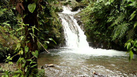 Waterfall in cloud forest Footage