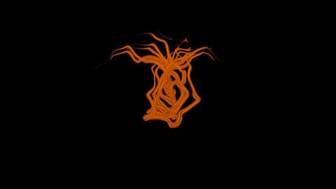 Ribbon Transition - orange Animation