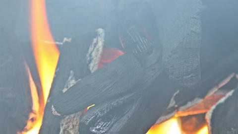 Preparation for barbecue on burning coal in iron brazier Live Action