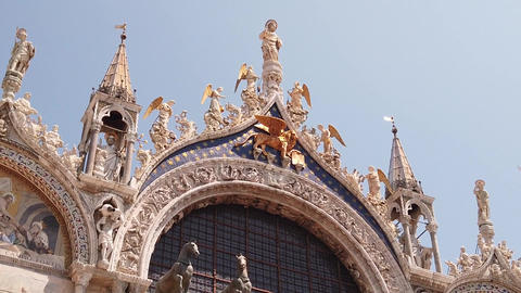 Venice italy tourism gold animal Live Action