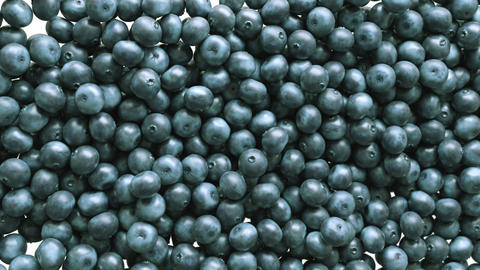 Blueberry slow motion flow and filling the screen. Alpha matte Animation