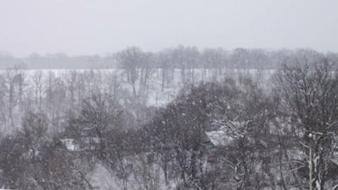 landscape in winter and falling snow Stock Video Footage
