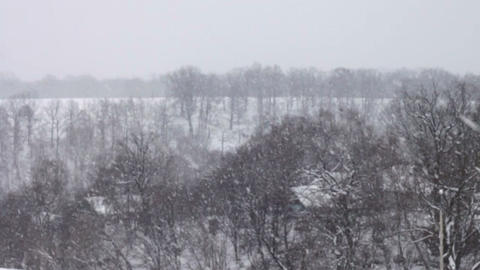 Landscape In Winter And Falling Snow stock footage