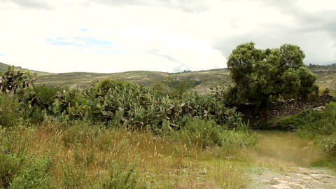 Countryside landscape in Peru Stock Video Footage