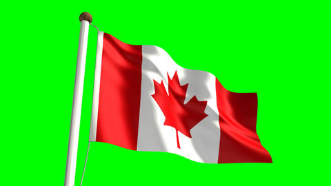 Canada Flag stock footage