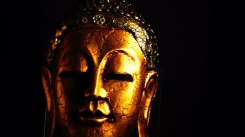 Buddha Stock Video Footage