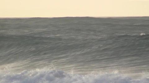Waves Byron Bay Footage