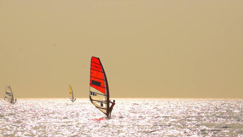 Sailboard Windsurfing Race Stock Video Footage