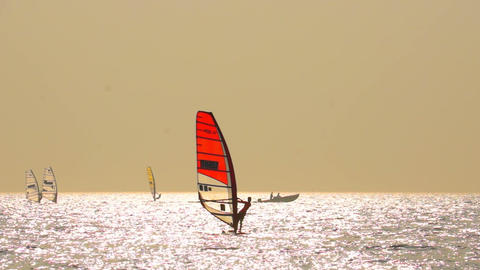 Sailboard Windsurfing Race Footage