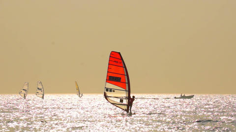 Sailboard Windsurfing Race Stock Video Footage