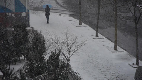 a man take umbrella walking on winter sidewalk,snowstorm Stock Video Footage