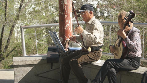 Chinese Musicians In Spring Park stock footage