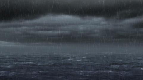 Storm 74617 Animation