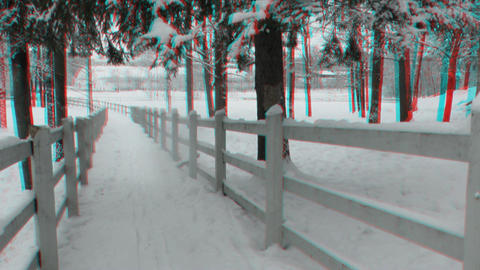 Fences around horse paddock in winter 2ana Stock Video Footage