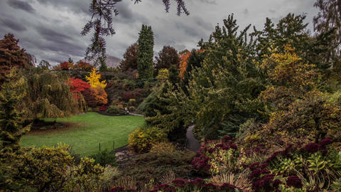 Time Lapse Cloudy Sky at Queen Elizabeth Park, Vancouver Stock Video Footage