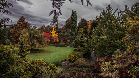 Time Lapse Cloudy Sky at Queen Elizabeth Park, Vancouver Footage